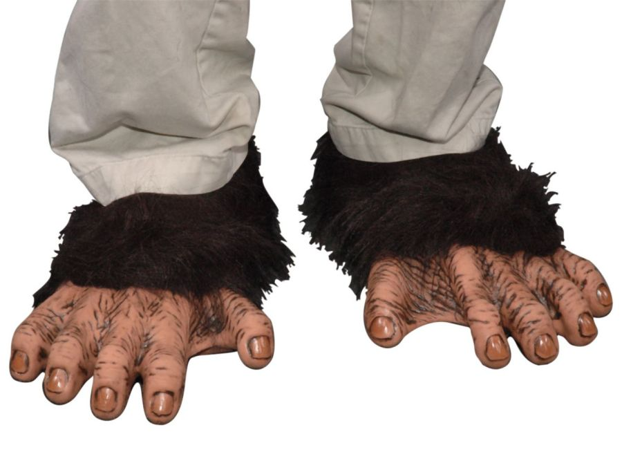 Featured Image for Chimp Feet