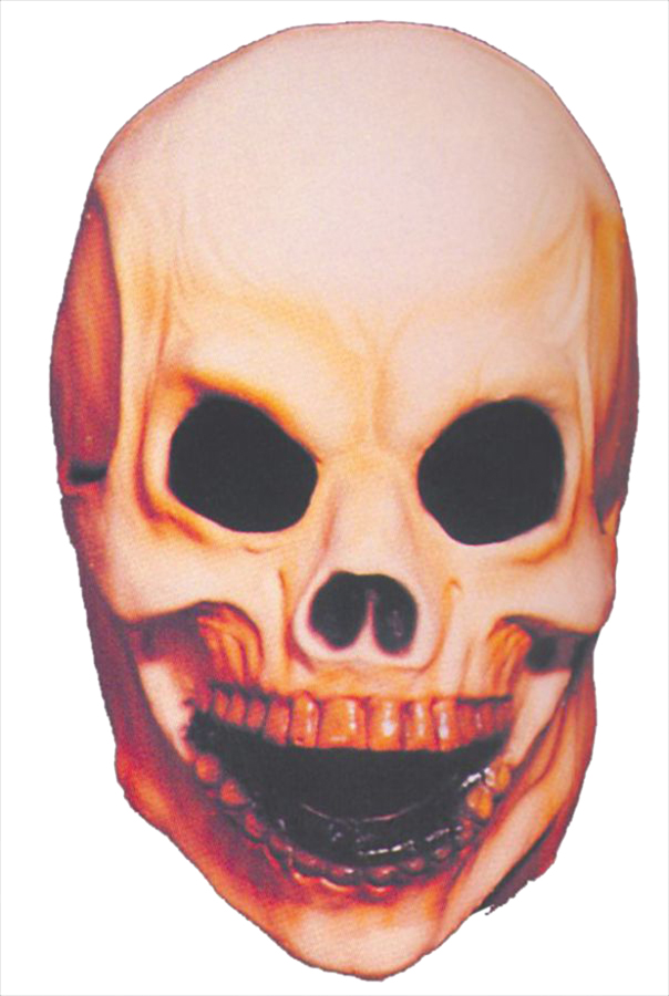 Featured Image for Small Skull Mask
