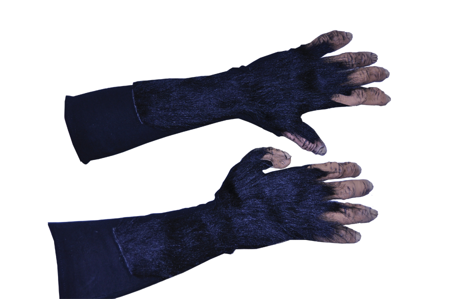 Featured Image for Chimp Hands