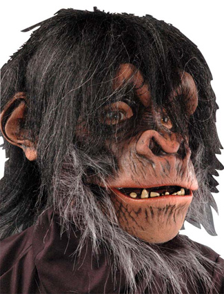 Featured Image for Chimp Mask