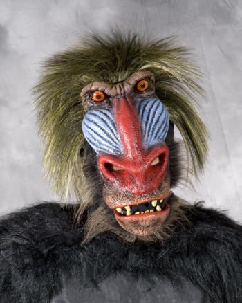 Featured Image for Baboon Mask
