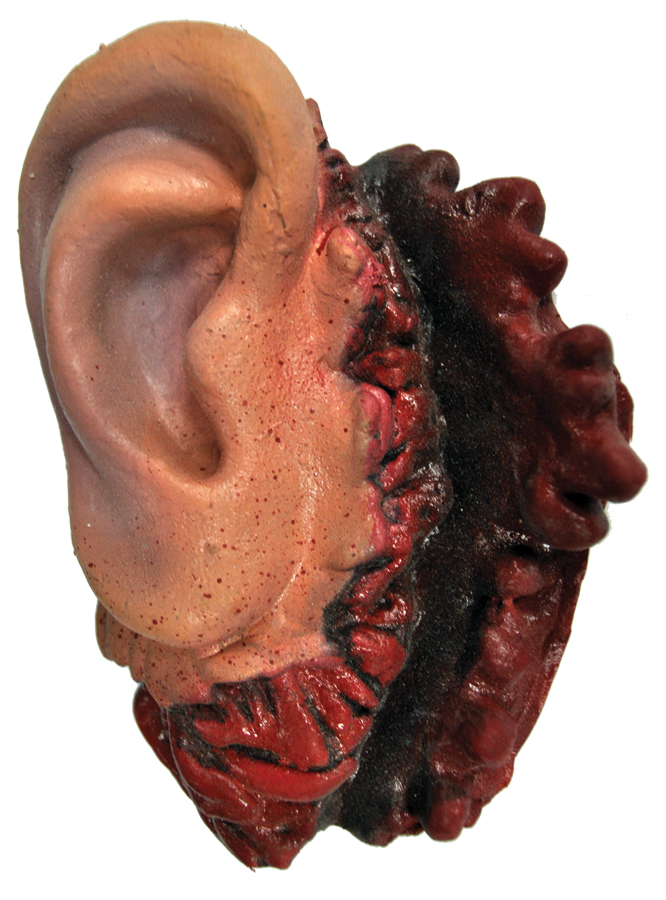 Featured Image for Latex Ear