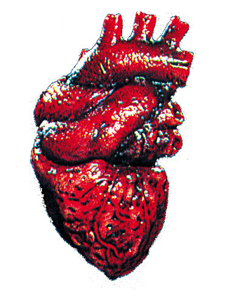 Featured Image for Heart Prop