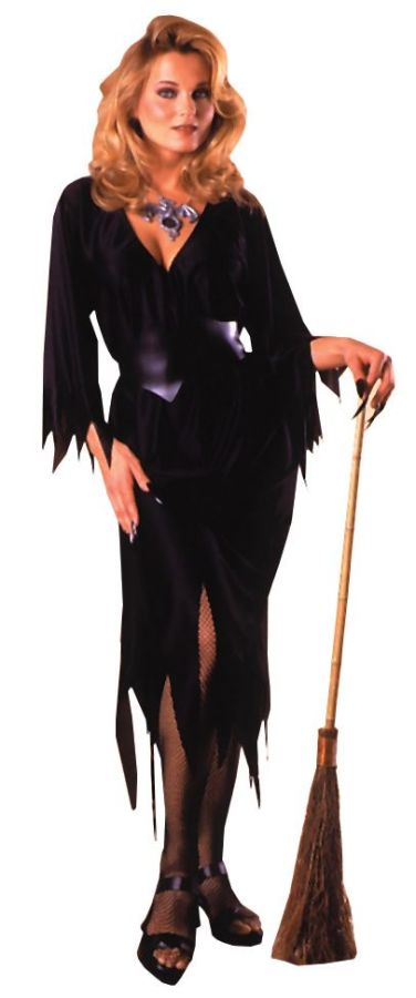 Featured Image for Women's Bewitching Witch Costume