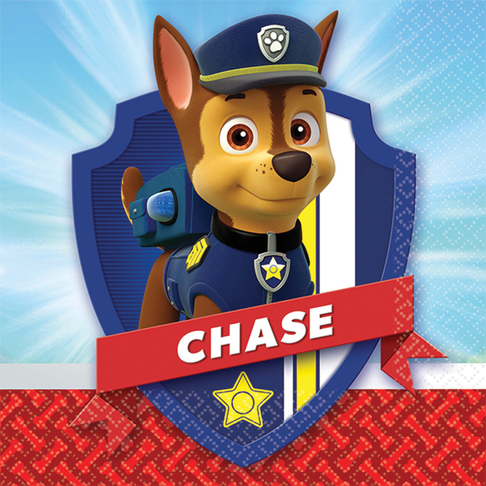 Featured Image for 5″ PAW Patrol Bev Napkins – Pack of 16