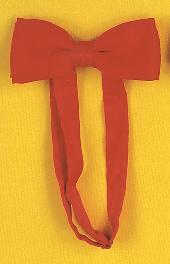 Featured Image for Satin Bow Tie with Band
