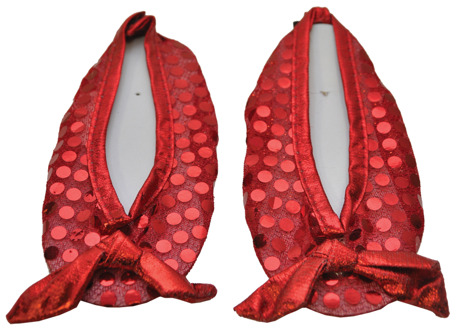 Featured Image for Girl's Ruby Slippers Shoe Covers – Wizard of Oz