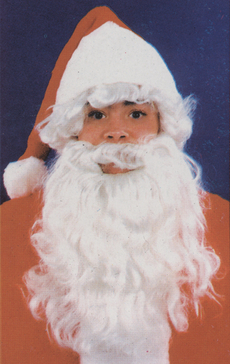 Featured Image for Boy's Santa Wig & Beard