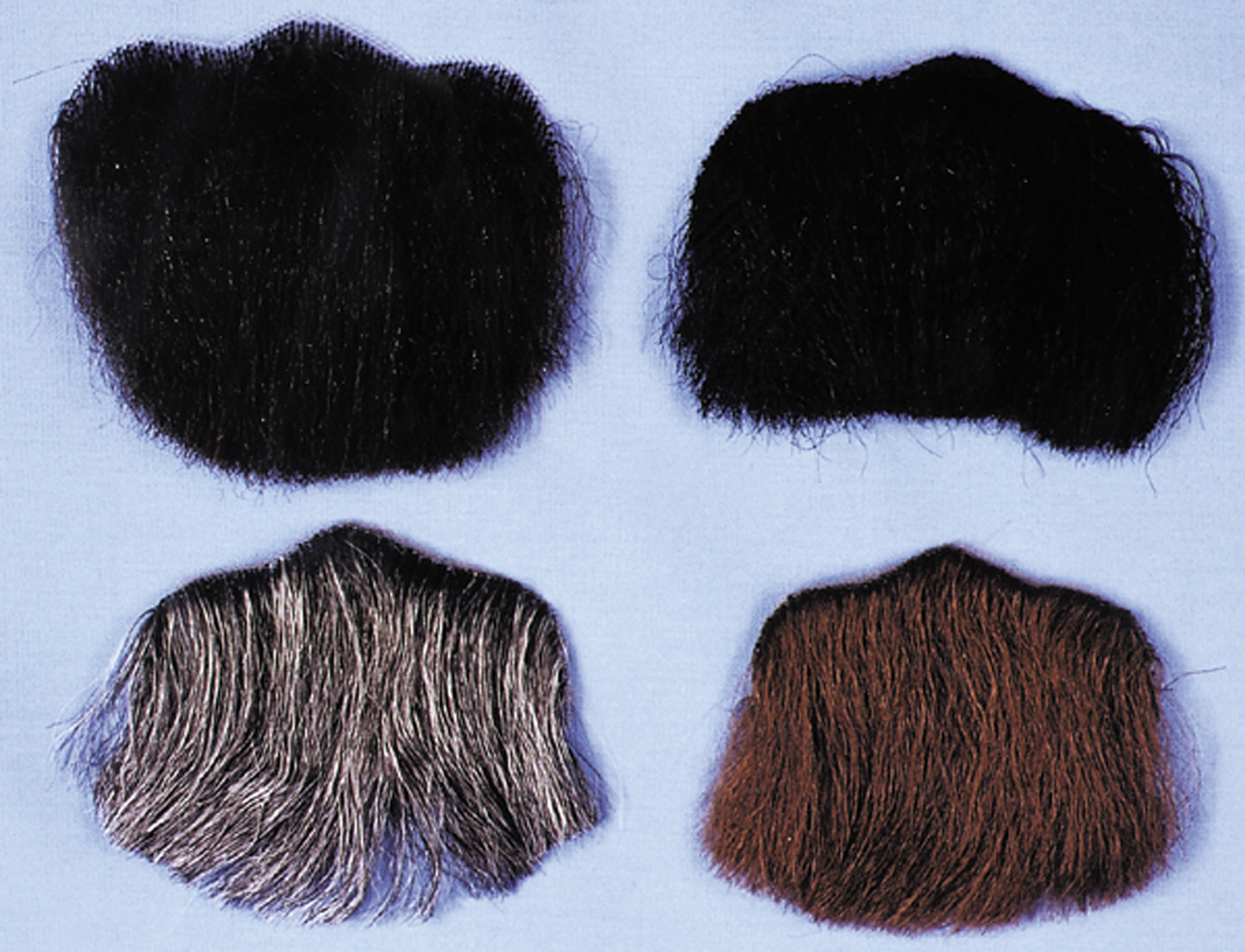 Featured Image for 3 Point Goatee – Human Hair